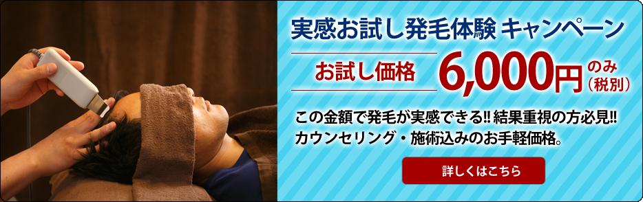 otameshi_bnr
